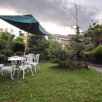 *自然溢れる中庭