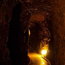 洞窟風呂に続くトンネル4