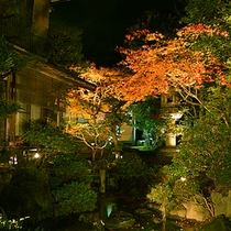 Beautiful Landscaped Gardens and Night view