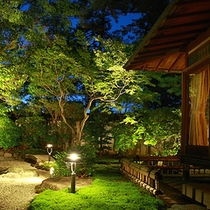 Beautiful Landscaped Gardens and Night view,TAKE