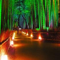 嵐山花灯路2013