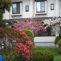 自慢の歴史ある庭園【5月ツツジと桜】