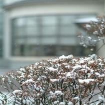 自慢の歴史ある庭園【冬季】