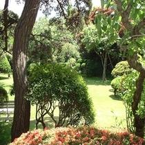 自慢の歴史ある庭園【夏季】