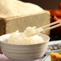 料理_ご飯