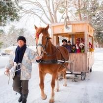 【公園めぐり馬車(冬)】