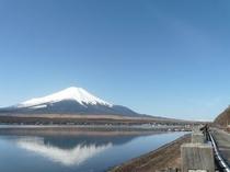 長池公園からの富士山