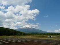 花の都公園からの富士山