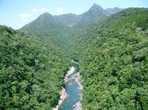 松峰大橋の上から山側を観たところ。
