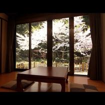 【さくら・もも】窓からの風景_桜