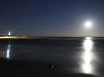 月光に照らされる海