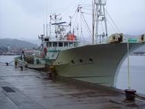 松葉がに 香住漁港 かに漁船