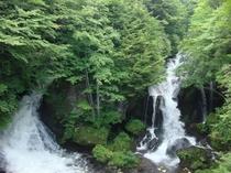 夏の竜頭の滝