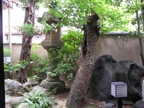 ロビー横庭園