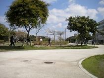 新都心公園は昼夜を問わずジョガーが集まります
