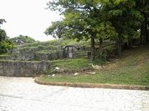 厳かな雰囲気が漂う亀甲墓