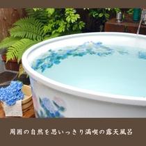 【滝の間・露天風呂(アップ)】