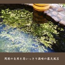 【自然満喫の露天風呂】