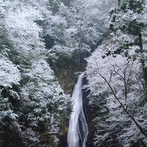不動滝<雪>