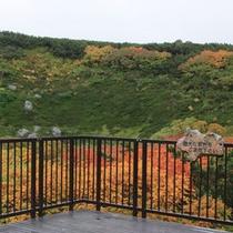 【旭岳(秋)】真っ赤な絨毯を敷き詰めたような紅葉が見られます。