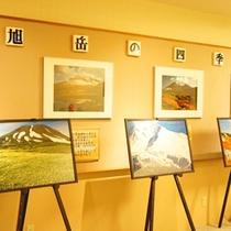 【ギャラリー】旭岳の四季をご覧いただけるギャラリー。全ての季節が美しい旭岳を、見にいらしてください。