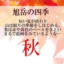 【旭岳の四季】秋