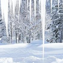 【つらら(冬)】窓の外にはまるで氷の芸術のような大きなつららが。