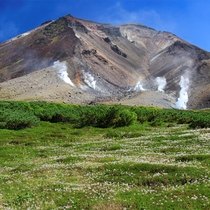 【旭岳(春)】夏が短い北海道で、美しい夏山の風景をお楽しみ下さい。