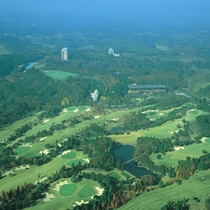 *【空からの風景】生命の森という名前だけあって、緑がこんなにたくさん!