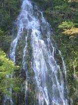 幻の滝:樽滝