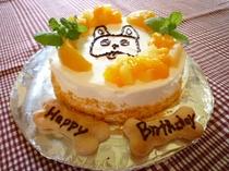 ワンコ用ケーキ!お誕生日にいかがですか!