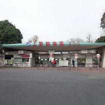 上野動物園 入り口
