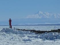オホーツク海を埋め尽くす感動の流氷。