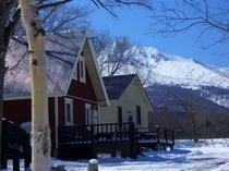 山が迫る冬の景観