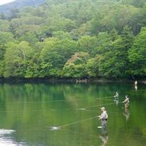 *【湯ノ湖】美しい緑に彩られた湖…周辺散策はいかがですか?