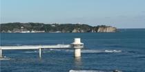 勝浦海中公園◆海中展望塔からは季節ごとに海の中を泳ぐ魚達や磯の様子が見られます。