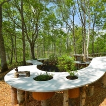 【北海道ガーデンショー】森の食卓