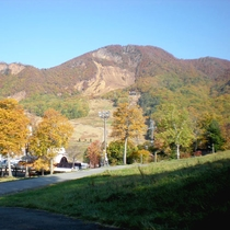 *【周辺/グリーン期】秋になるとブナ、シラカバ、ダケカンバなどの落葉樹が色づきます。
