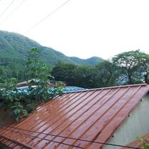 *【窓からの景色】静かな自然に囲まれた当館。