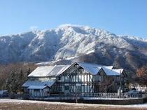 初雪のころのホワイトウイング