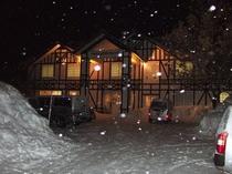 雪の中、夜のホワイトウイング