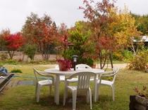 裏庭の紅葉の様子