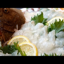 獲れたて&ピチピチのお魚をお造りに!