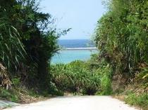 海の見える路