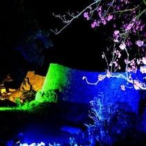 """幻想的空間♪なきじん城跡""""夜桜ライトアップ"""""""