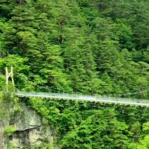 瀬戸合峡・渡らっしゃい吊橋