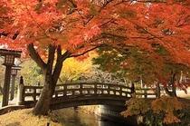 秋の猪苗代