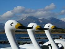 猪苗代湖と磐梯山