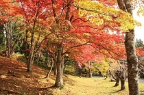 猪苗代の秋景色