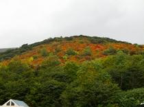 2010峠の茶屋